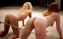 BDSM harem slaves 1 upskirtporn